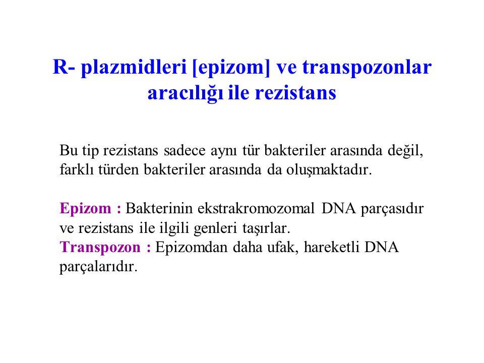R- plazmidleri [epizom] ve transpozonlar aracılığı ile rezistans